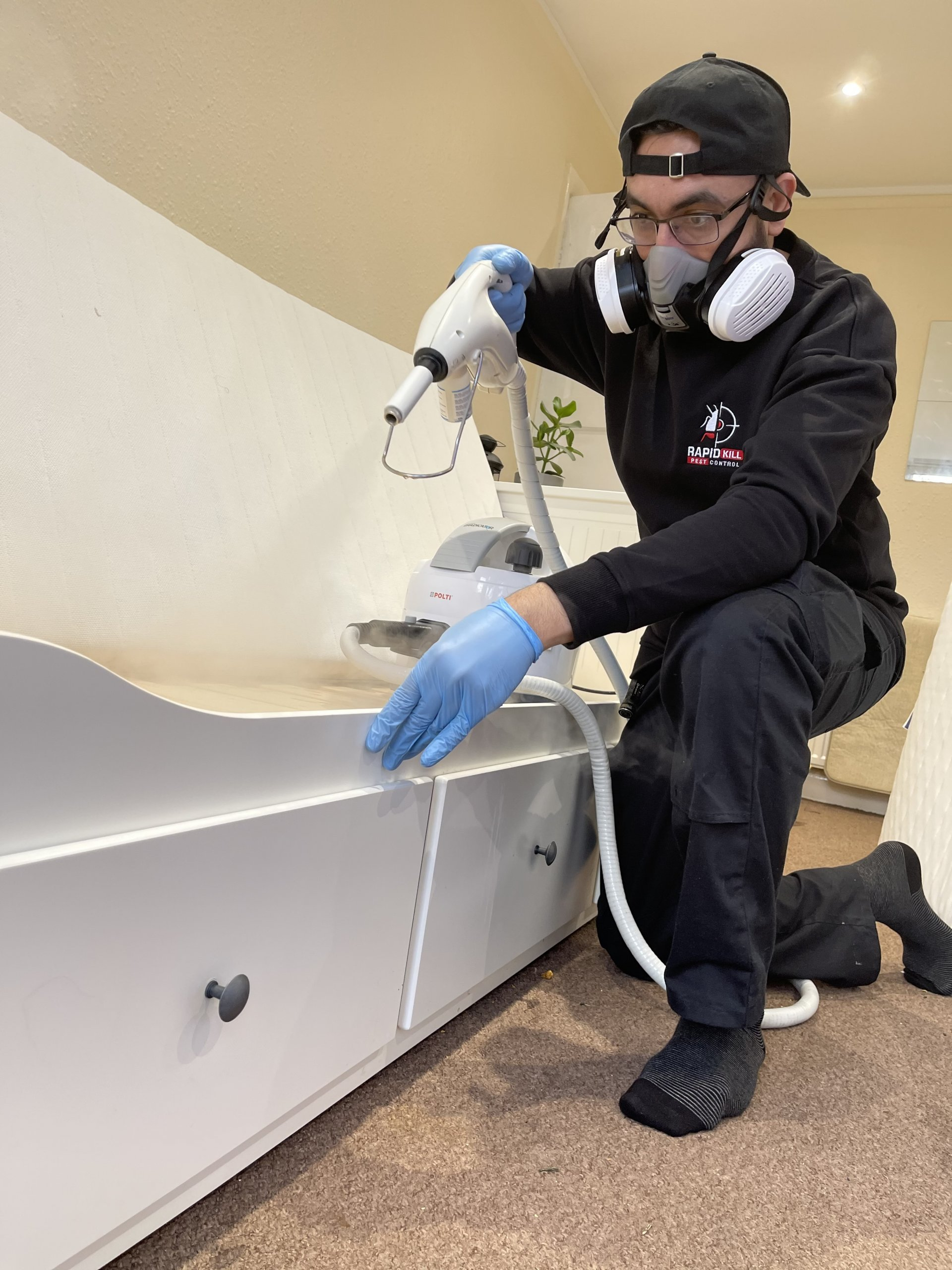 Bedbugs steam treatment